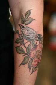 Audobon bird society tattoos